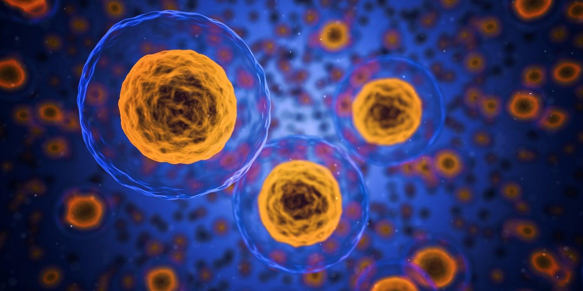 Wenn Zellen nicht mehr auf Insulin reagieren, haben sie Insulinresistenz entwickelt