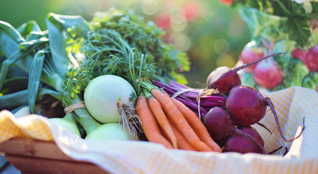 Natürliche Nahrungsmittel sind eine Option, wie Du Insulinsensitivität wiederherstellen kannst
