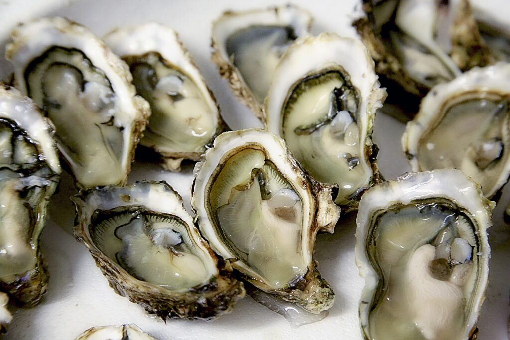Oysters can cover the daily requirement of copper and zinc