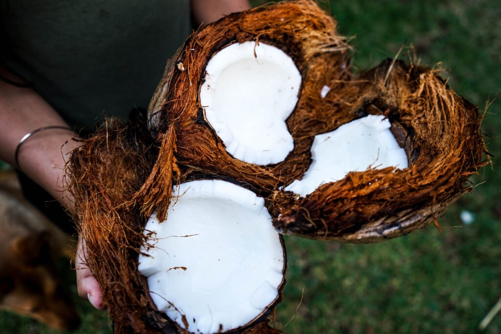 Coconuts provide good saturated keto fats
