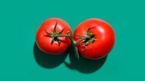 tomaten sind lebensmittel, die lektine enthalten