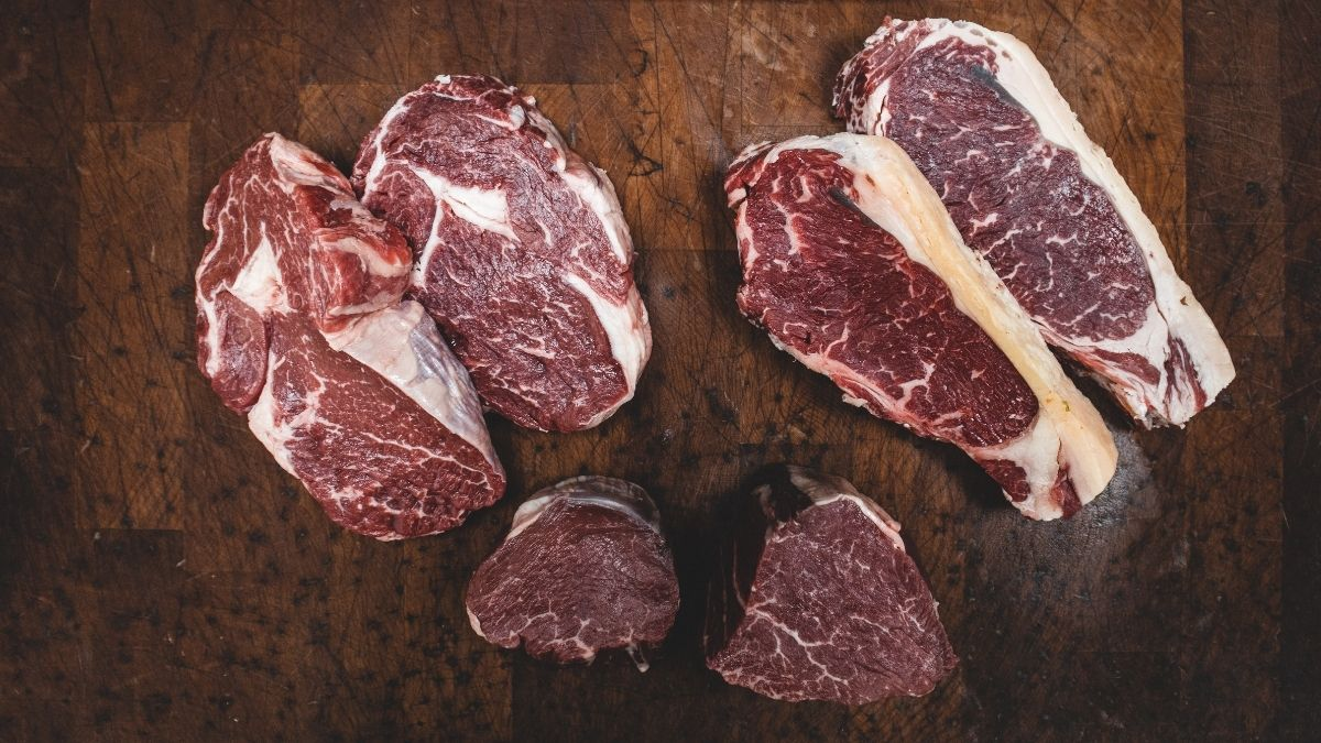 carnivore diet meal plan