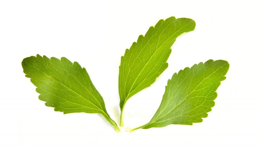 Stevia leaves can be bad for you
