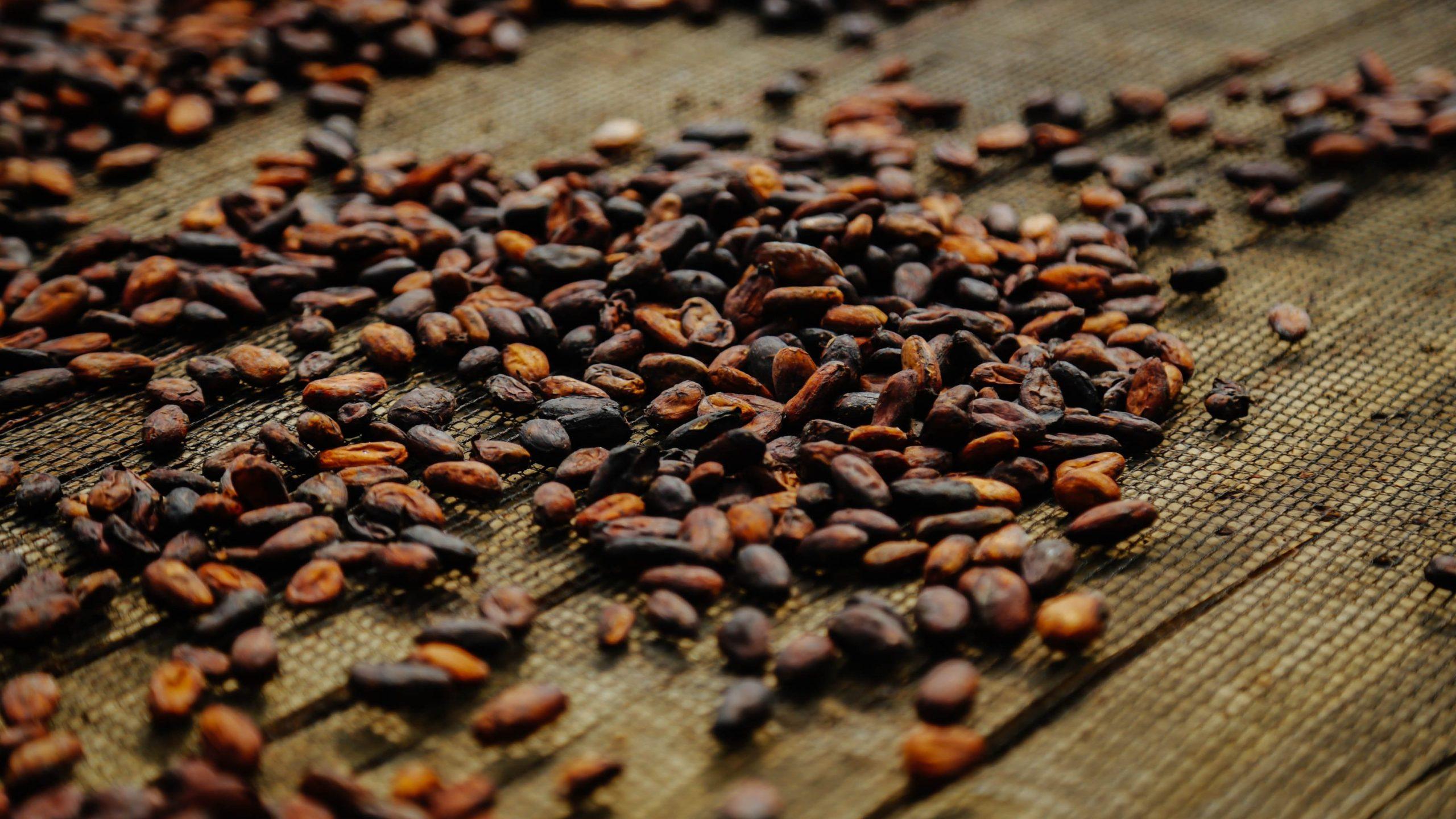 Kakao Nibs sind ein nährstoffreicher Low-Carb-Snack
