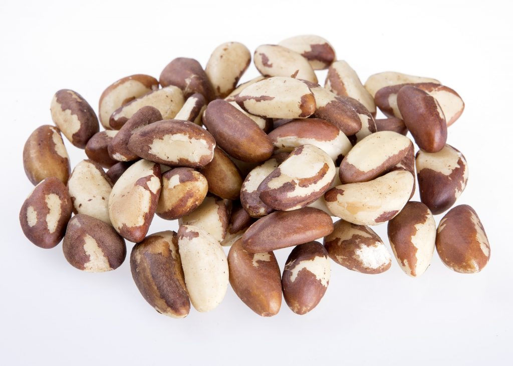 brazil nuts are a first class selenium source