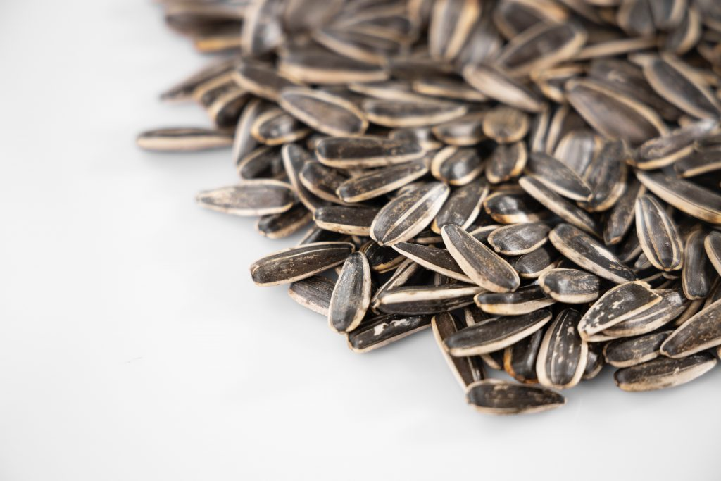 sunflower seeds are high in omega-6 fatty acids