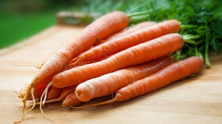 carbs in carrots: are carrots keto?