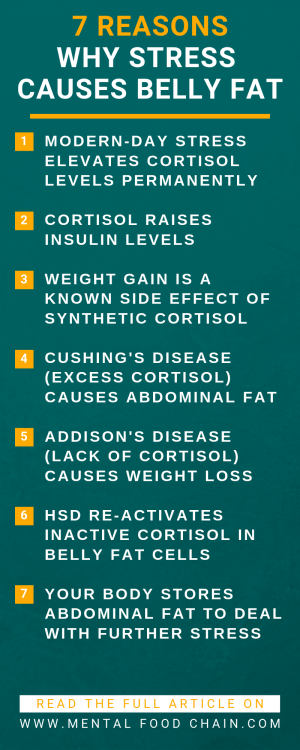 An infographic list of seven reasons why chronic stress causes weight and a cortisol belly.